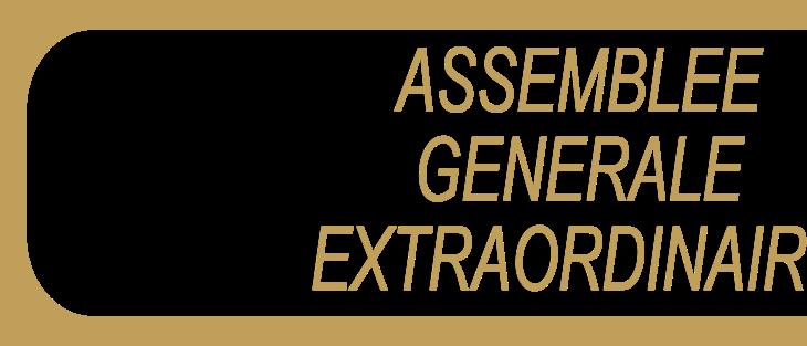 Assemblée Générale Extraordinaire en ligne